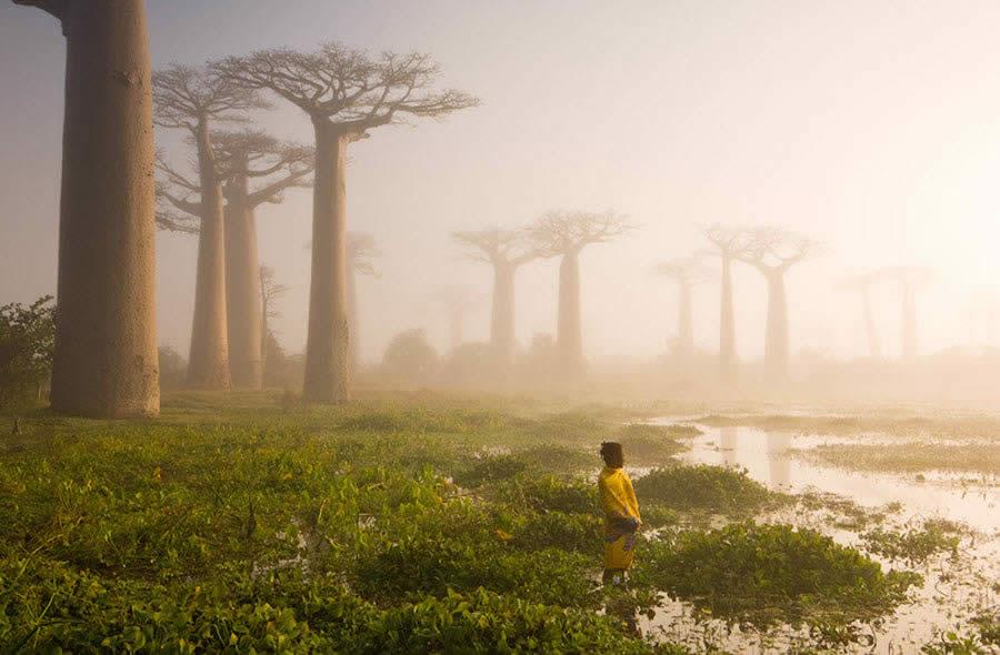 Morondava on the west coast of Madagascar